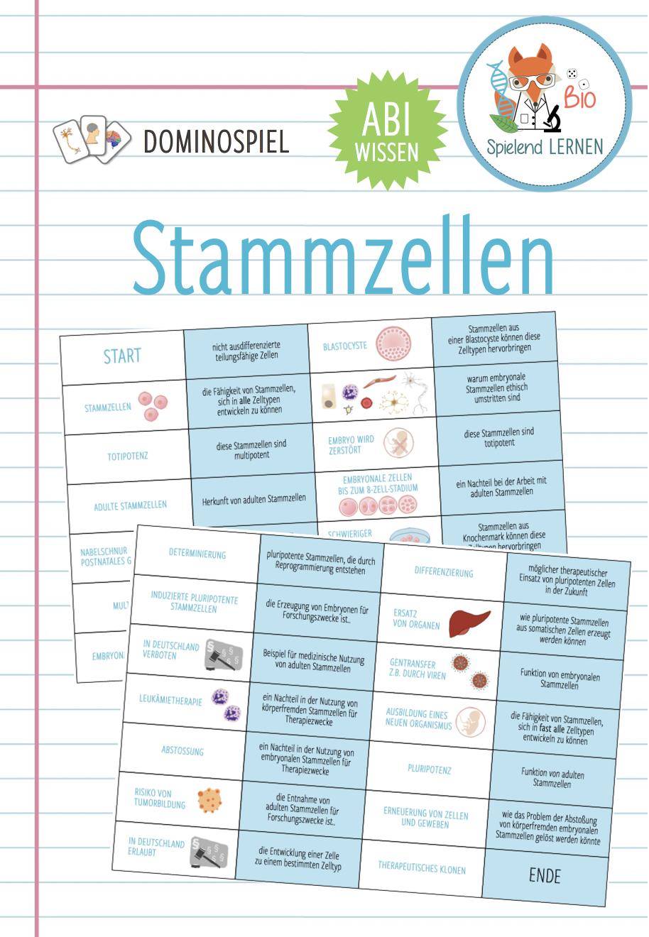 Stammzellen Dominospiel Abitur Unterrichtsmaterial Im Fach Biologie In 2020 Domino Spiele Stammzellen Domino