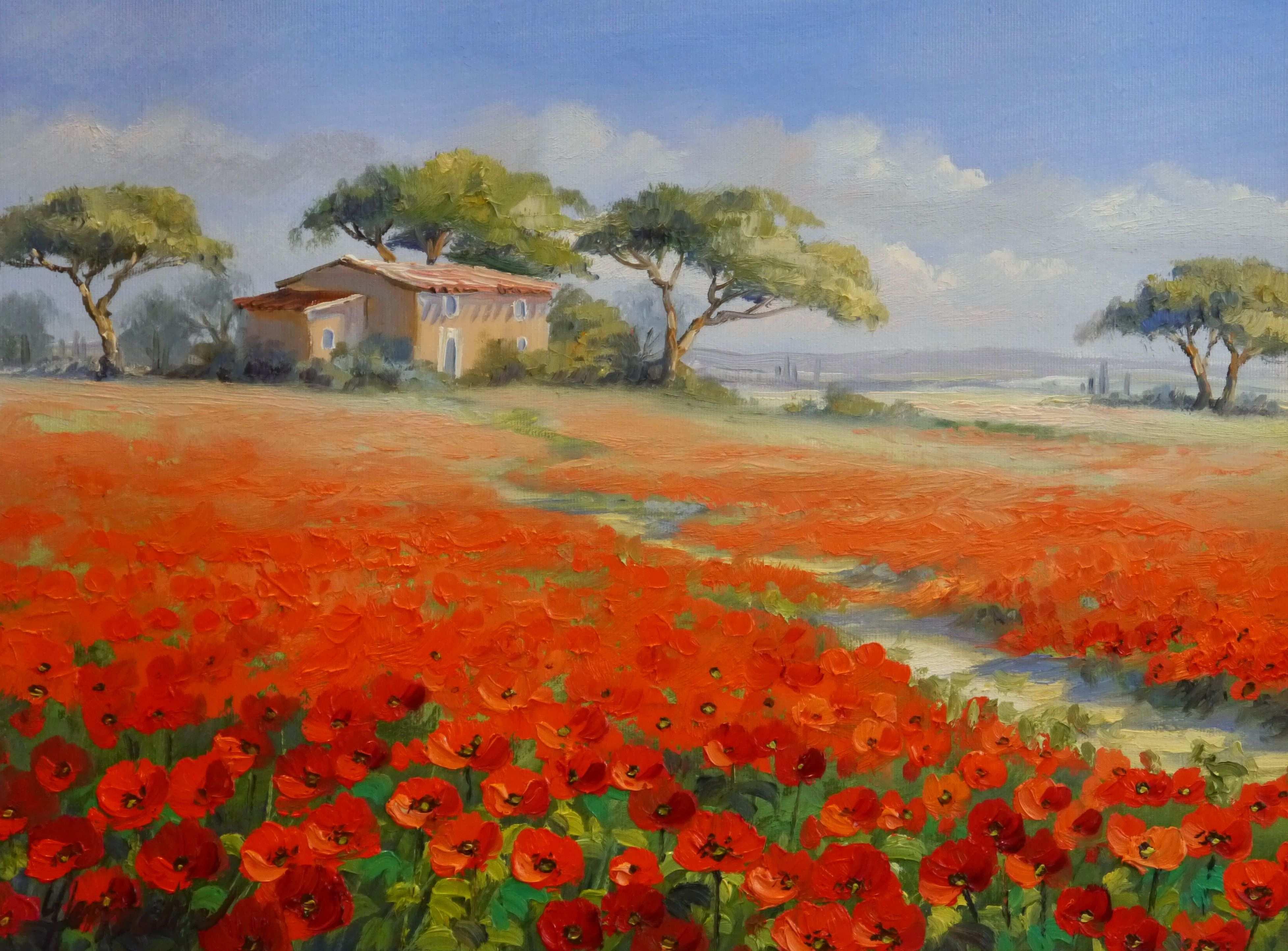 Mohn In Der Provence In Frankreich Ein Haus Liegt Zwischen Pinien Eingebettet Der Weg Fuhrt Zwisc Mediterrane Gemalde Landschaftskunst Aquarell Landschaften