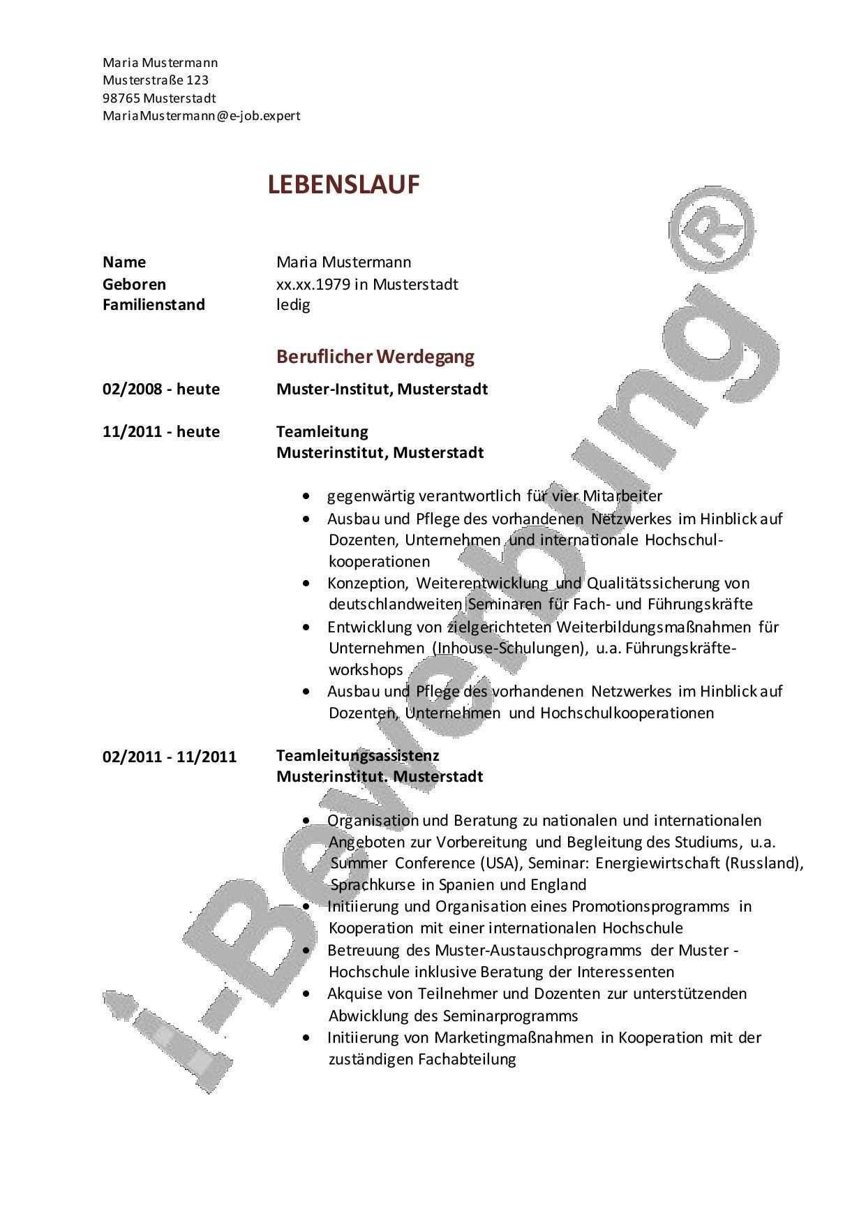 I Bewerbung Als Teamleiterin Muster Lebenslauf Lebenslauf Lebenslauf Beispiele Beruflicher Werdegang