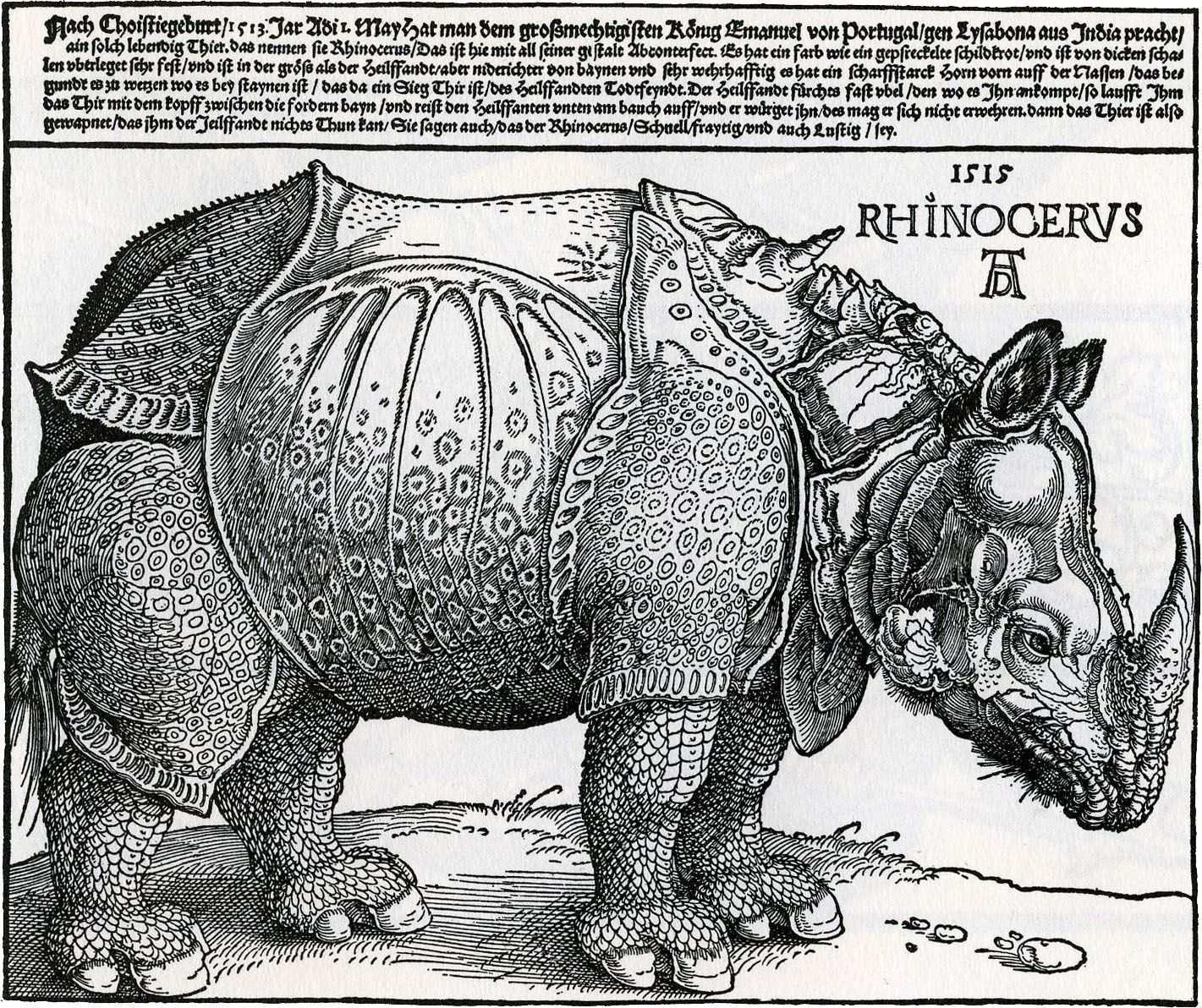 Rhinoceros Engraving Albrecht Durer Renaissance Kunst Kunstproduktion