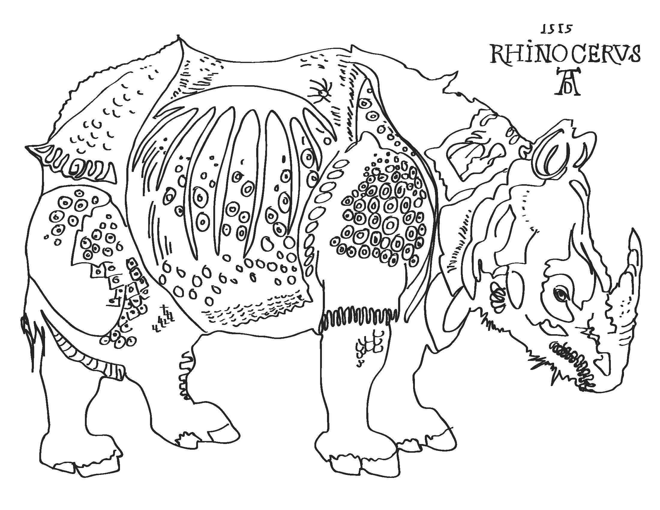 Albrecht Durer S Rhino Albrecht Durer Rhino Art Conversation Art