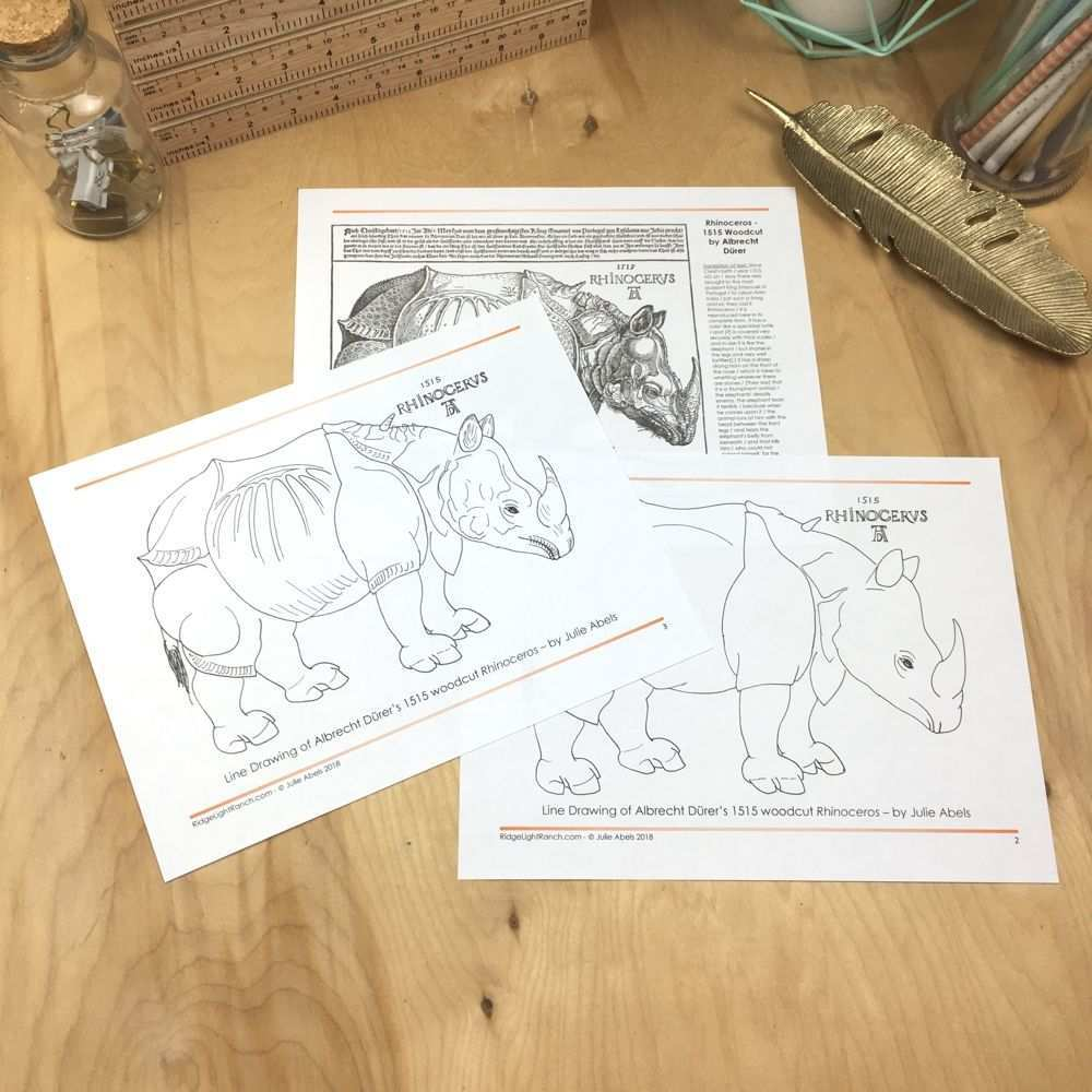 Line Drawing Of Durer S Rhino Line Drawing Drawings Woodcuts Prints