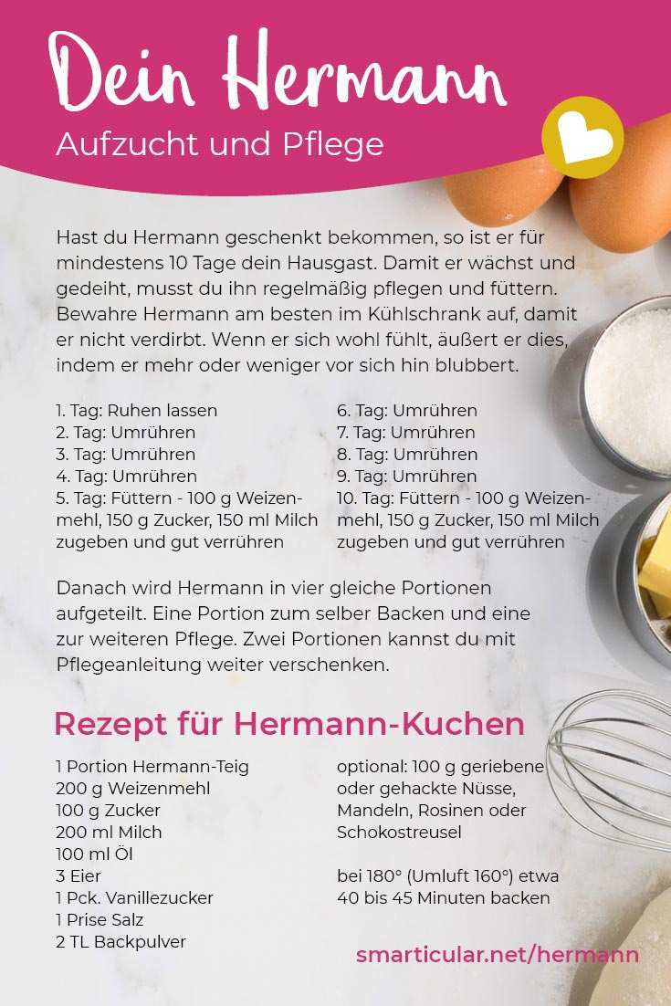 Hermann Teig Selber Machen Grundrezept Aufzucht Pflege