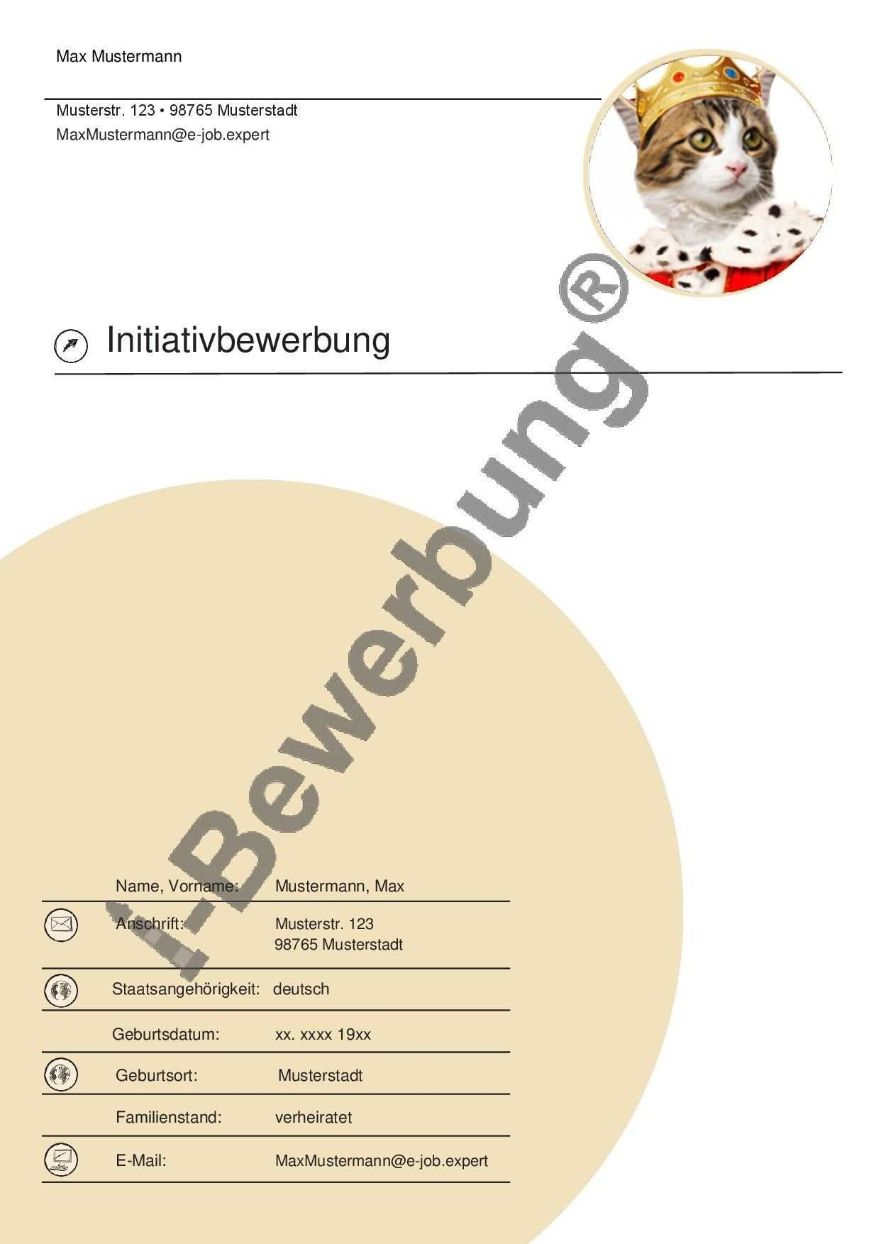 Das Deckblatt Zu Ihrer Initiativbewerbung Muster 561 Deckblatt Vorlage Deckblatt Bewerbung