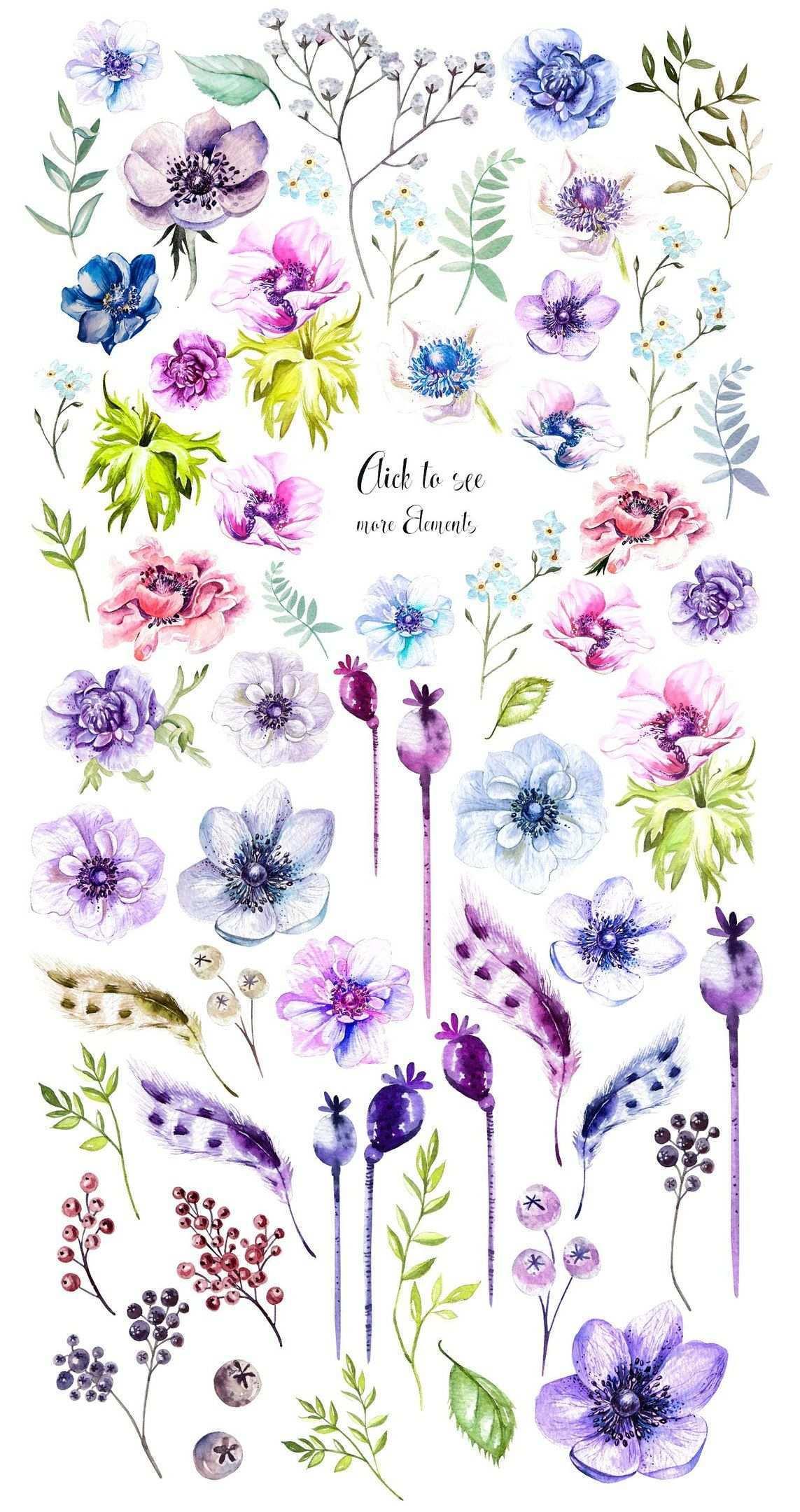 Roses Stili I Stranichki Dlya Skrapa Cvetochnye Illyustracii Risovanie Cvetov Akvarelnye Illyustracii