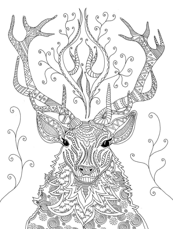 Fantastisches Reich Der Tiere Meditatives Ausmalen Amazon De Marielle Enders Bucher Ausmalbilder Tiere Ausmalbilder Mandala Tiere