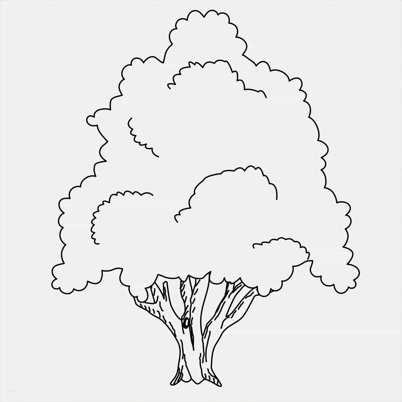 Neu Bastelvorlage Baum Farbung Malvorlagen Malvorlagenfurkinder Bastelvorlagen Baum Basteln Basteln