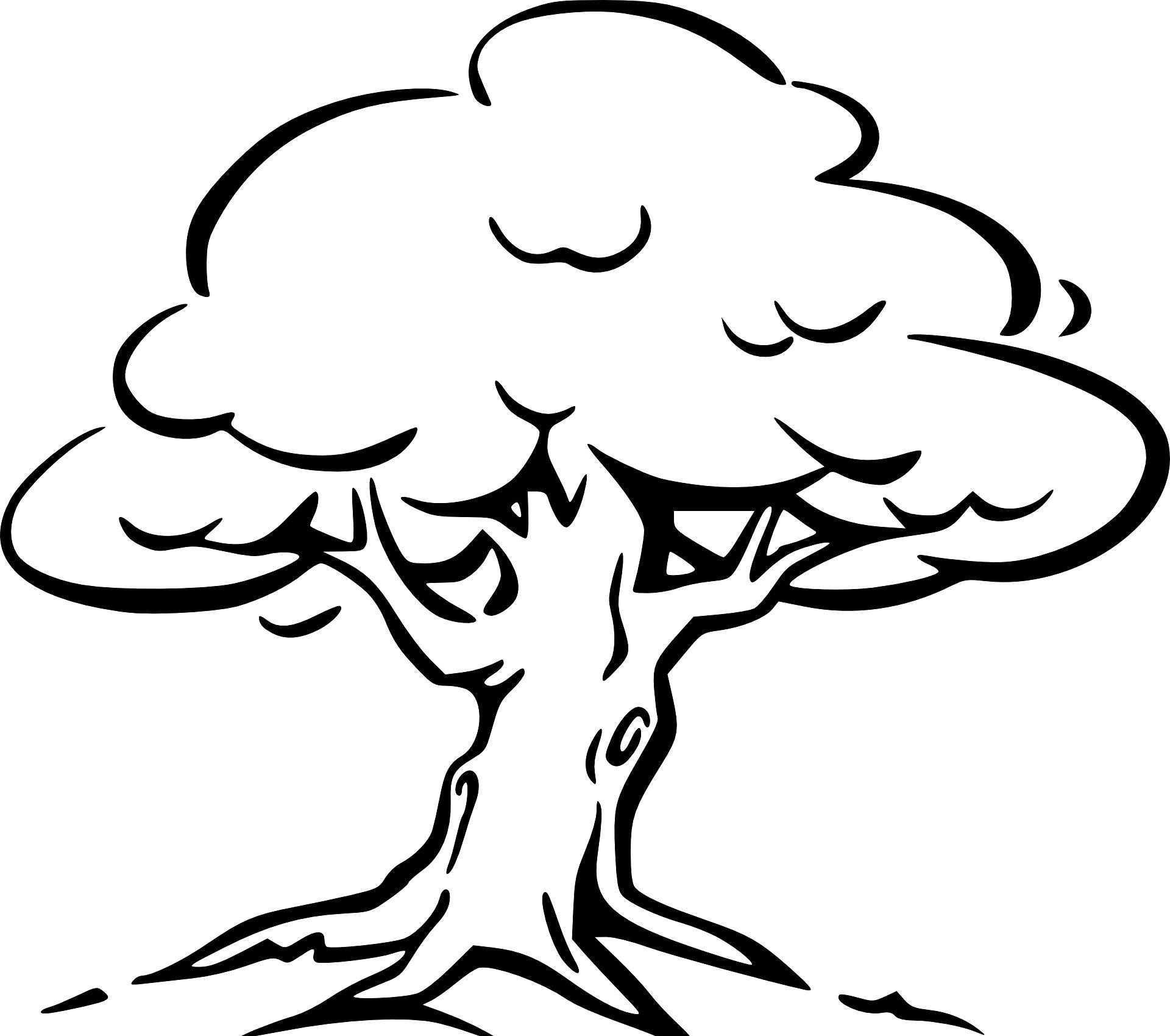 Baum Mit Wurzeln Ausmalbild Malvorlagen Baum Zeichnung Ausmalbilder