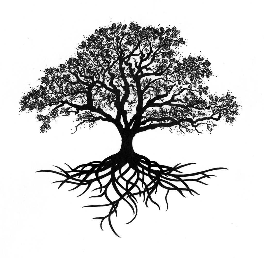 Tree Roots Tattoo Google Search Eichenbaum Tattoo Baum Des Lebens Tattoos Und Tattoo Life