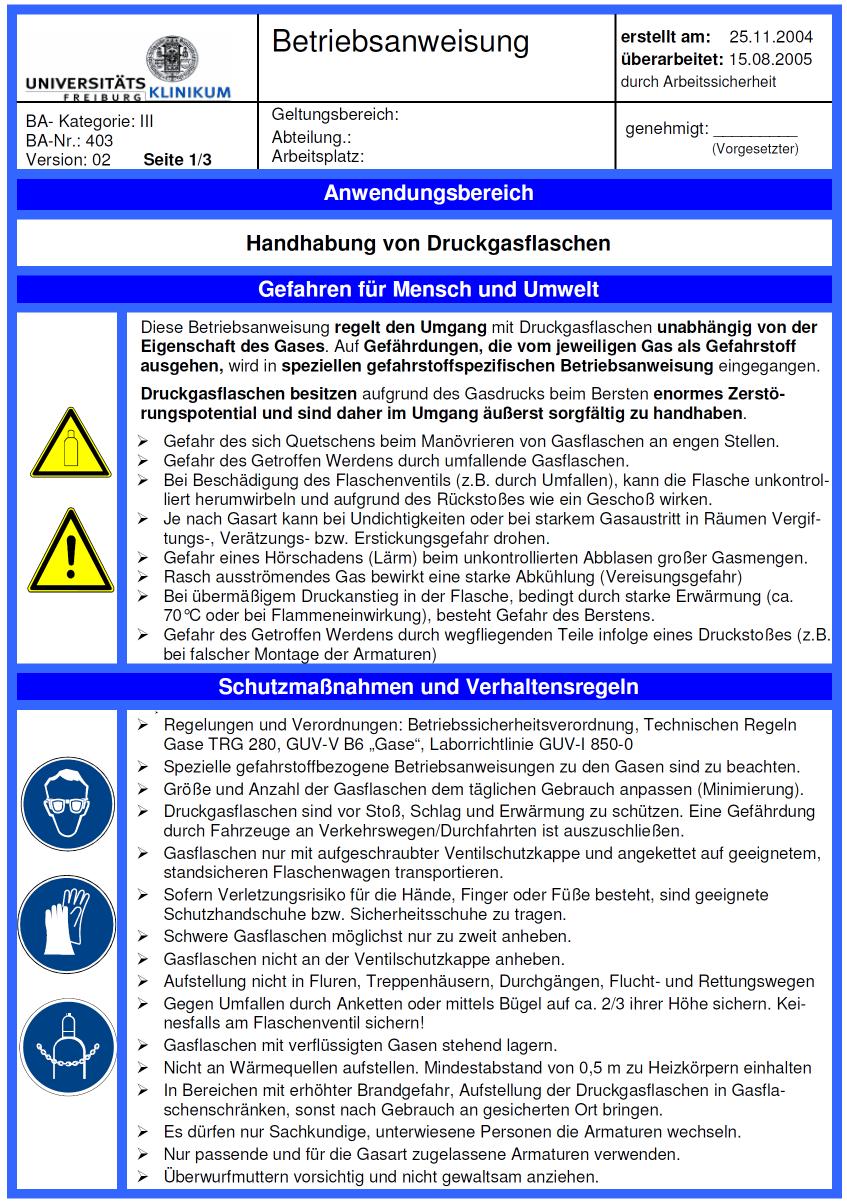 Allgemeine Betriebsanweisung Pdf Kostenfreier Download