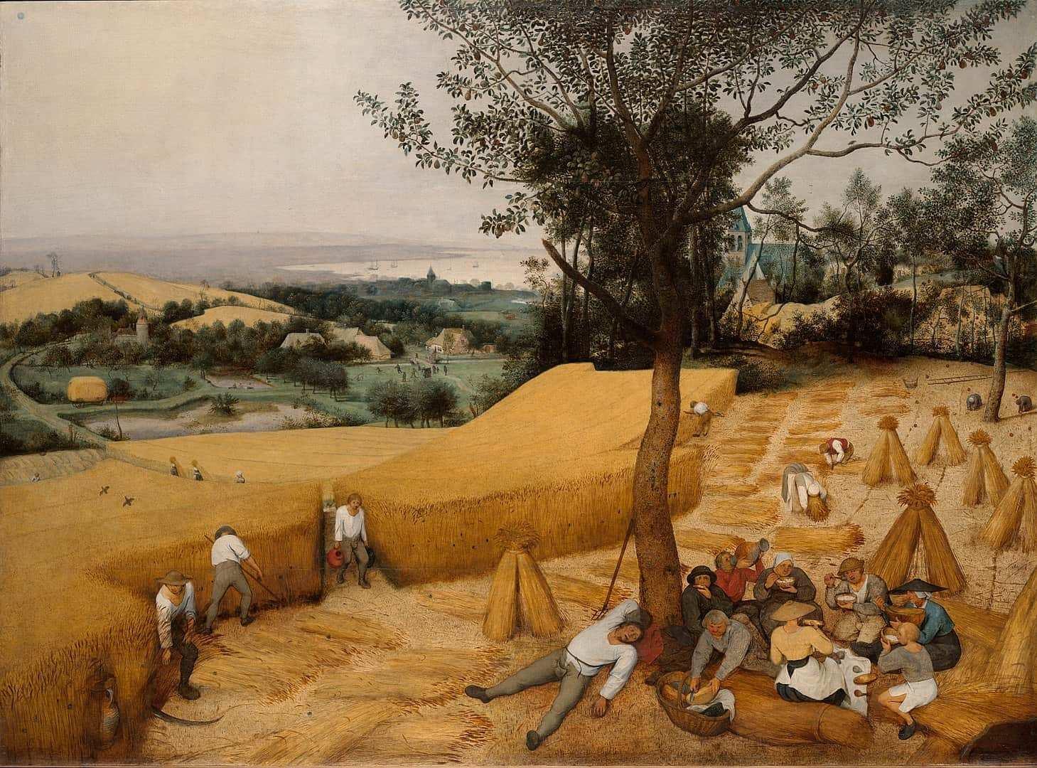 Die Kornernte Bildbeschreibung Und Hintergrunde Zu Bruegels Gemalde