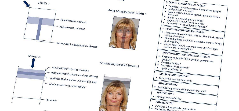 Passbild Schablone Fur Biometrische Fotos Passfotos Org