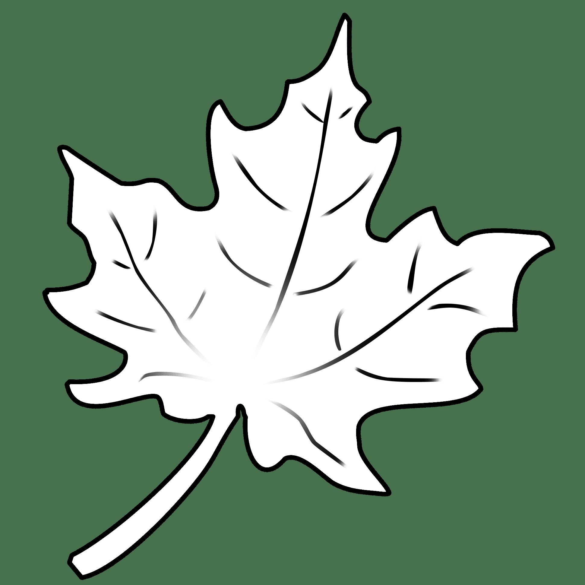 Herbstblatter Vorlagen Dekoking Diy Bastelideen Dekoideen Zeichnen Lernen Herbstblatter Vorlagen Blattzeichnung Herbst Blatter