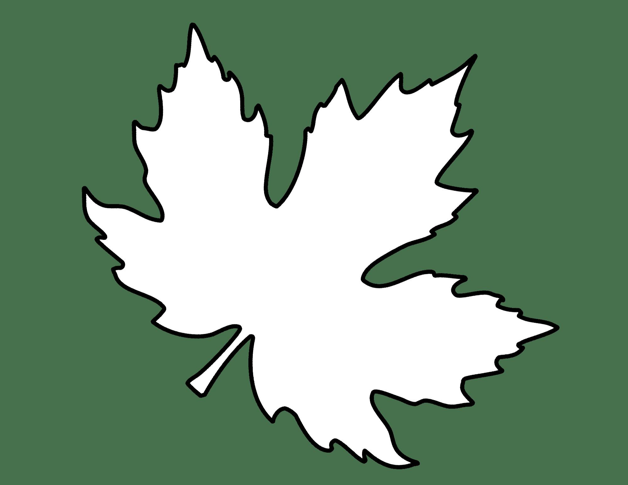 Herbstblatter Vorlagen Dekoking Diy Bastelideen Dekoideen Zeichnen Lernen Herbstblatter Vorlagen Herbst Blatter Bastel Herbst