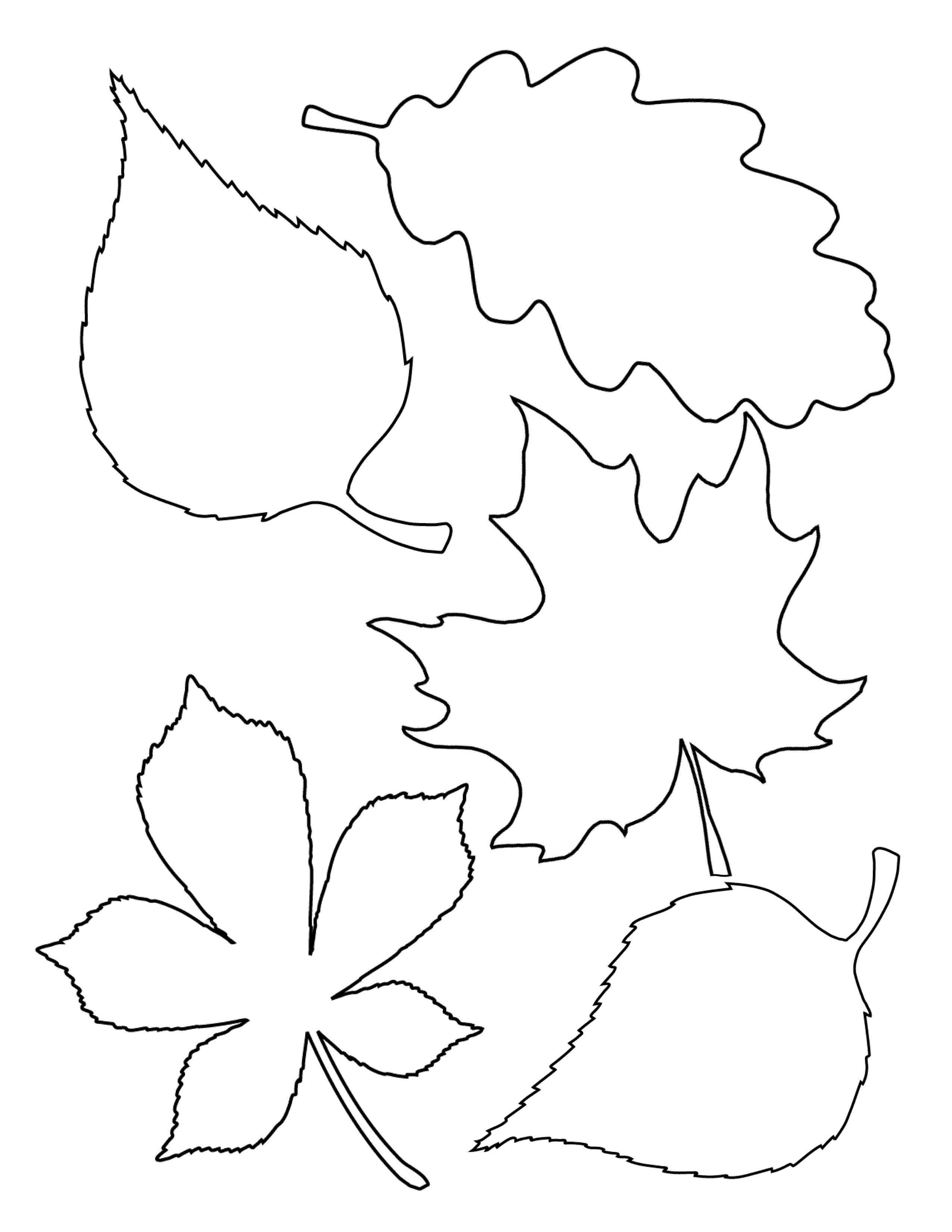 4 Easy Fall Garlands A Beautiful Mess Fall Leaf Template Leaf Template Leaf Coloring Page