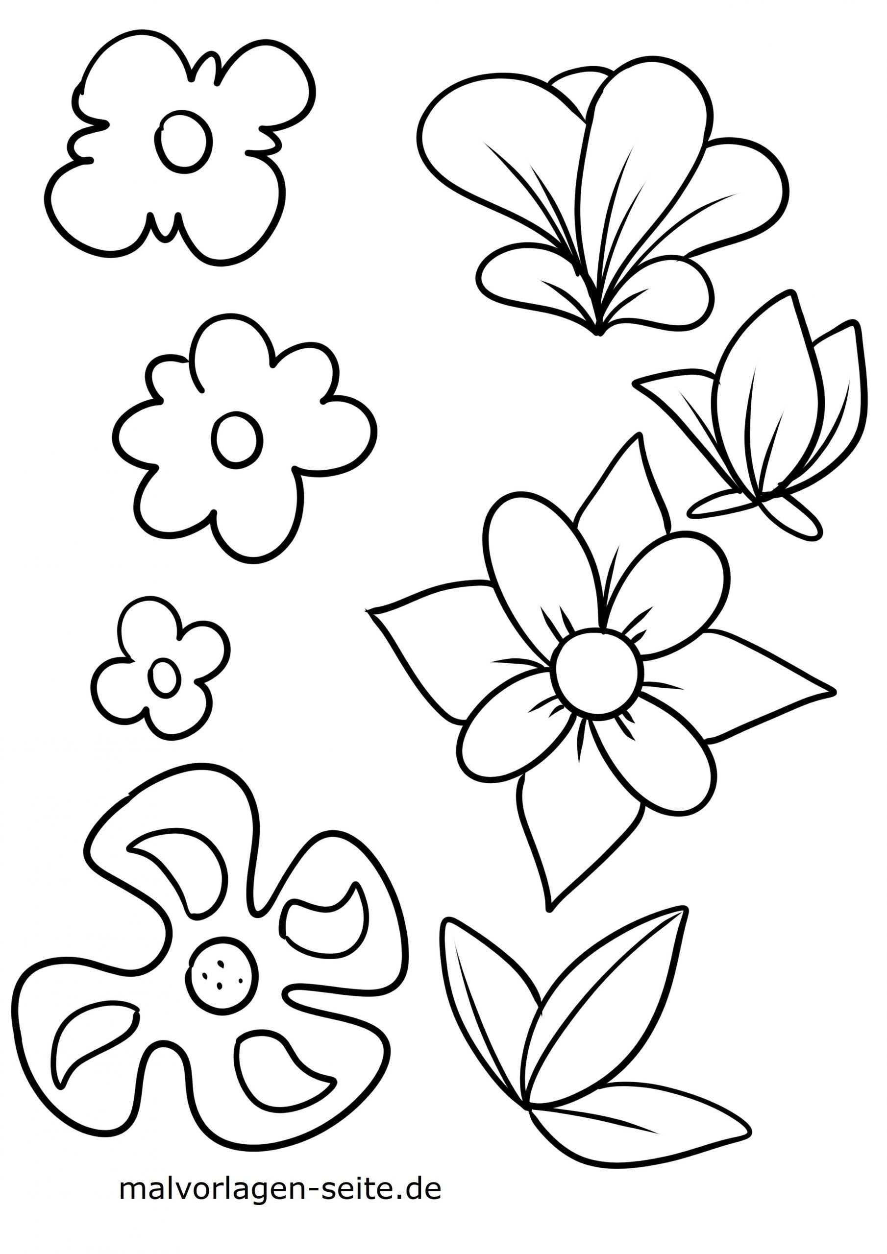 Malvorlagen Fur Kinder Blumen