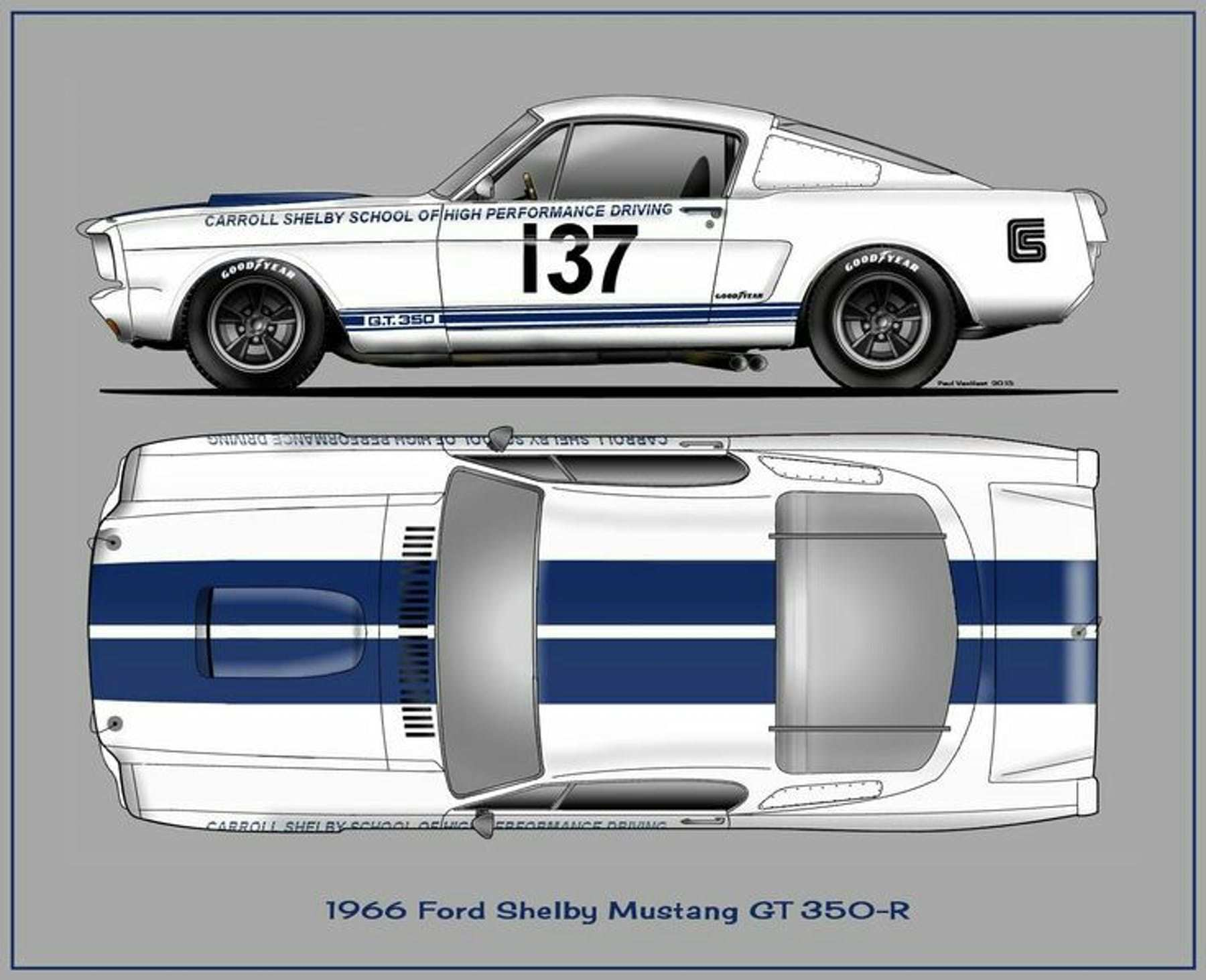 Shelby Gt 350 Shelby Gt Mustang Ford Shelby
