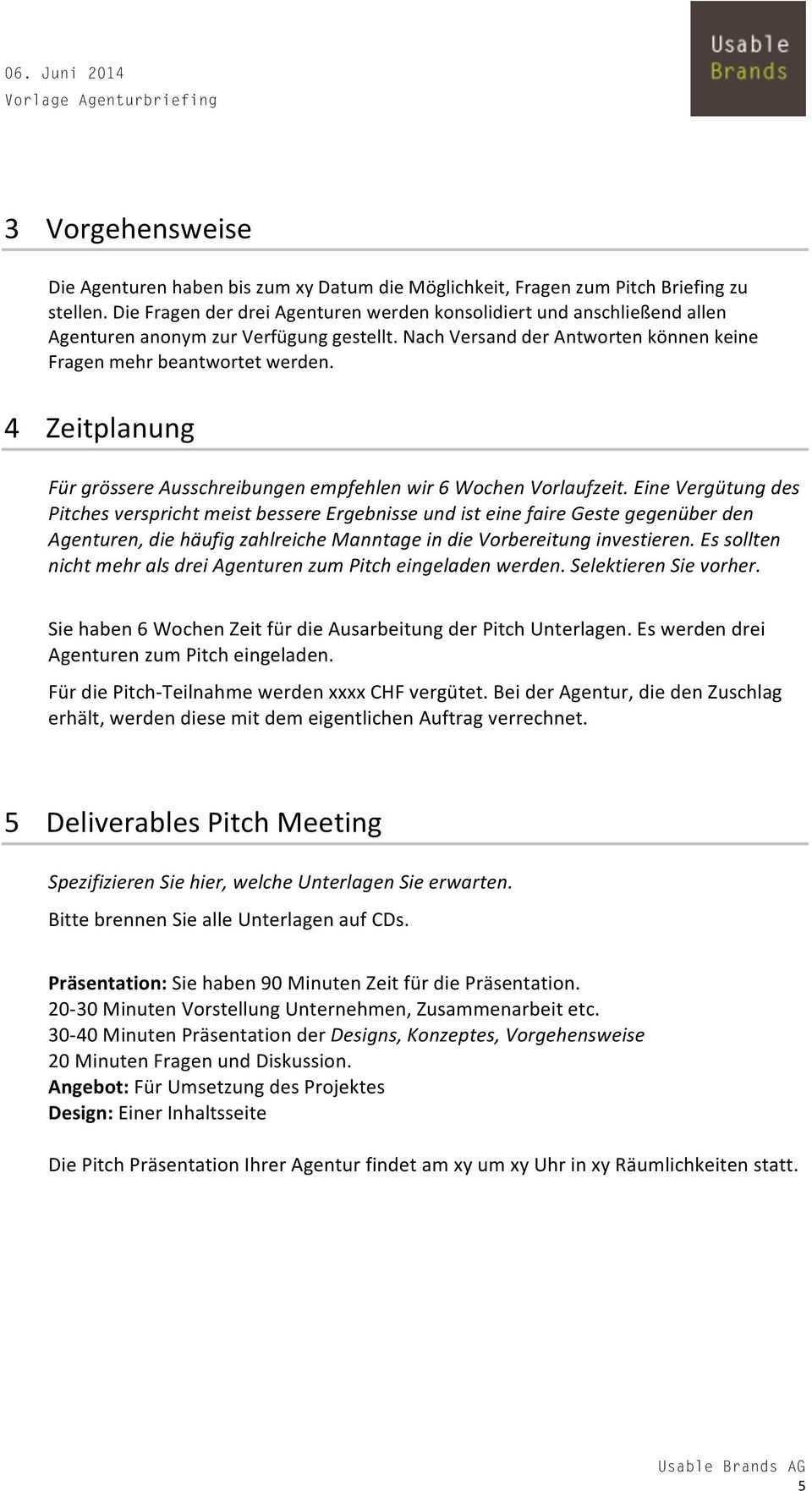 Vorlage Agenturbriefing Usable Brands Ag Feldstrasse Zurich 41 0 Pdf Kostenfreier Download