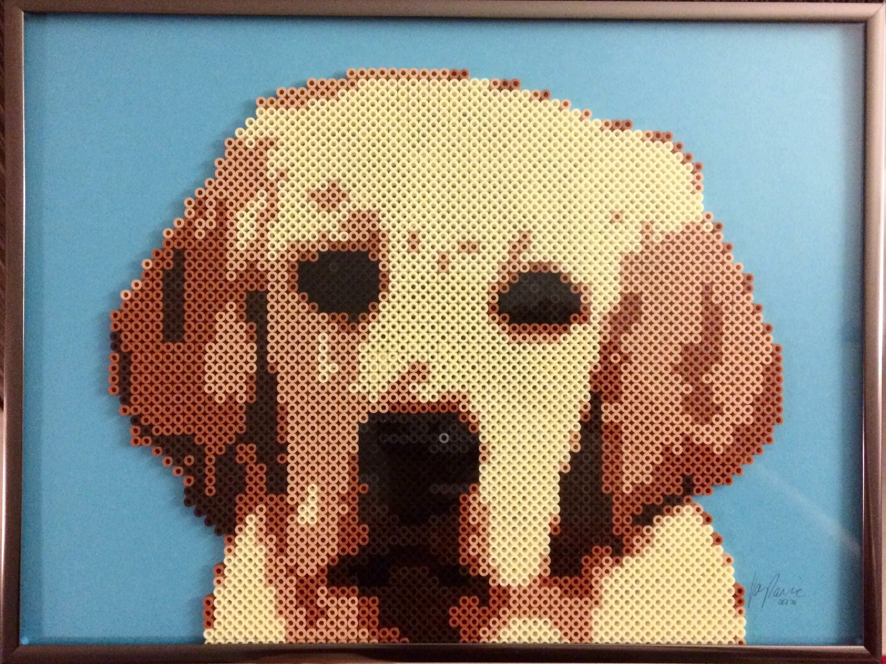 Ein Labrador Aus 2755 Bugelperlen Und 7 Farben Schwarz Dunkelbraun Braun Beige Creme Silber Und Grau 2 Tage Arb Bugelperlen Motive Labrador Bugelperlen
