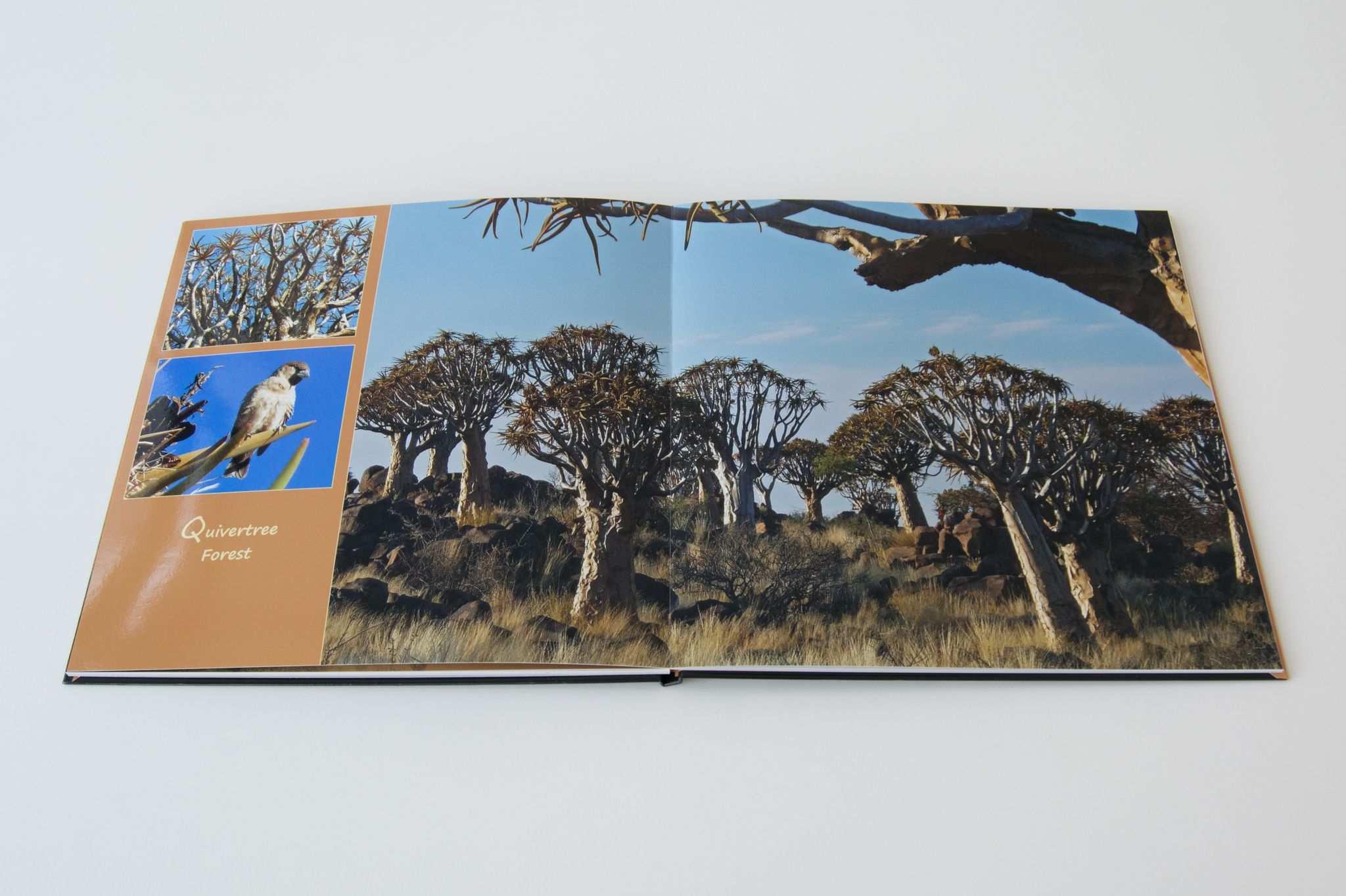 Innenansicht Des Reisefotobuchs Aus Namibia Das Cewe Fotobuch Konnen Sie Online Per App Oder Bequem Per Software Gestalten Fotobuch Fotos Bucher