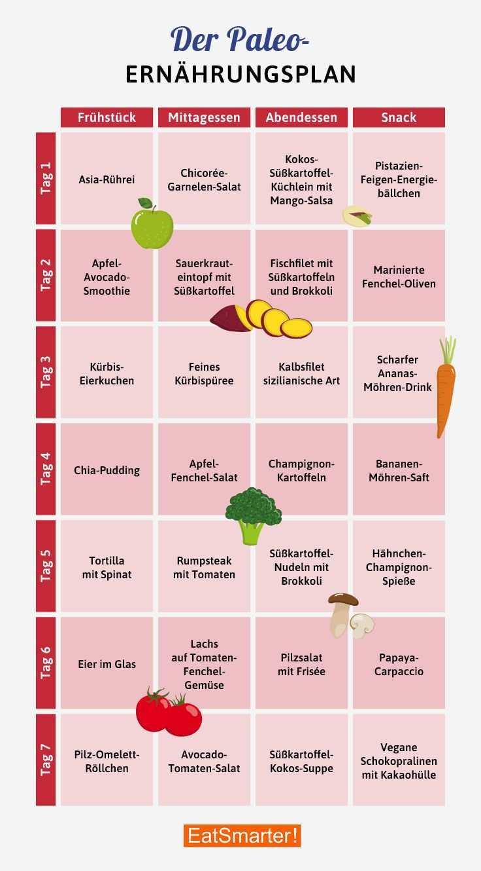 Dein Gratis Paleo Ernahrungsplan Fur 7 Tage Paleo Ernahrungsplan Palao Ernahrungsplan Ernahrung