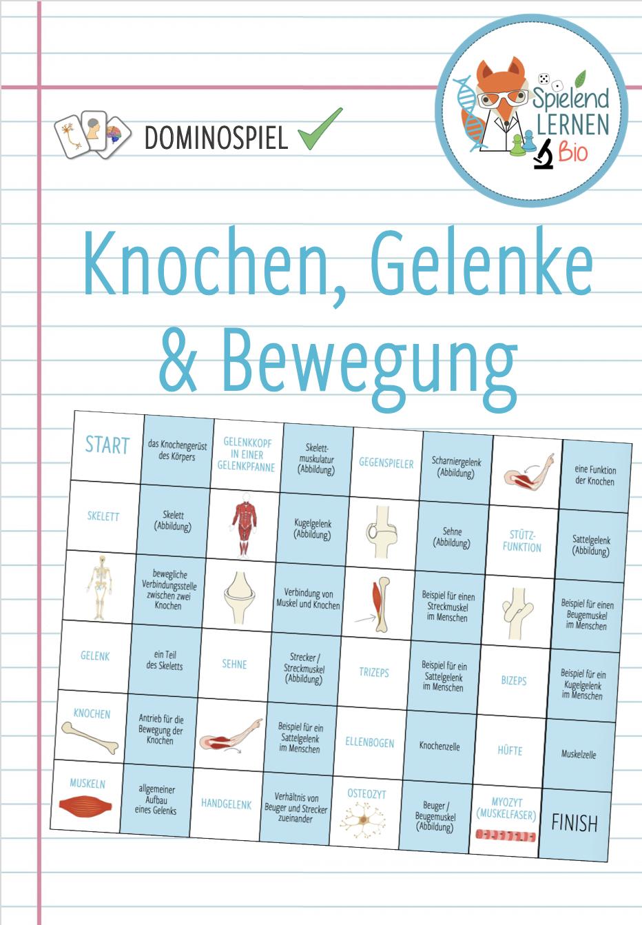 Knochen Gelenke Bewegung Dominospiel Unterrichtsmaterial Im Fach Biologie Domino Spiele Domino Set Spiel