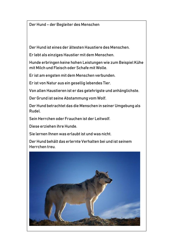 Der Hund Begleiter Vom Menschen Leichte Sprache Sachtext Unterrichtsmaterial In Den Fachern Daz Daf Deutsch Sachunterricht In 2020 Leichte Sprache Sachen Hunde