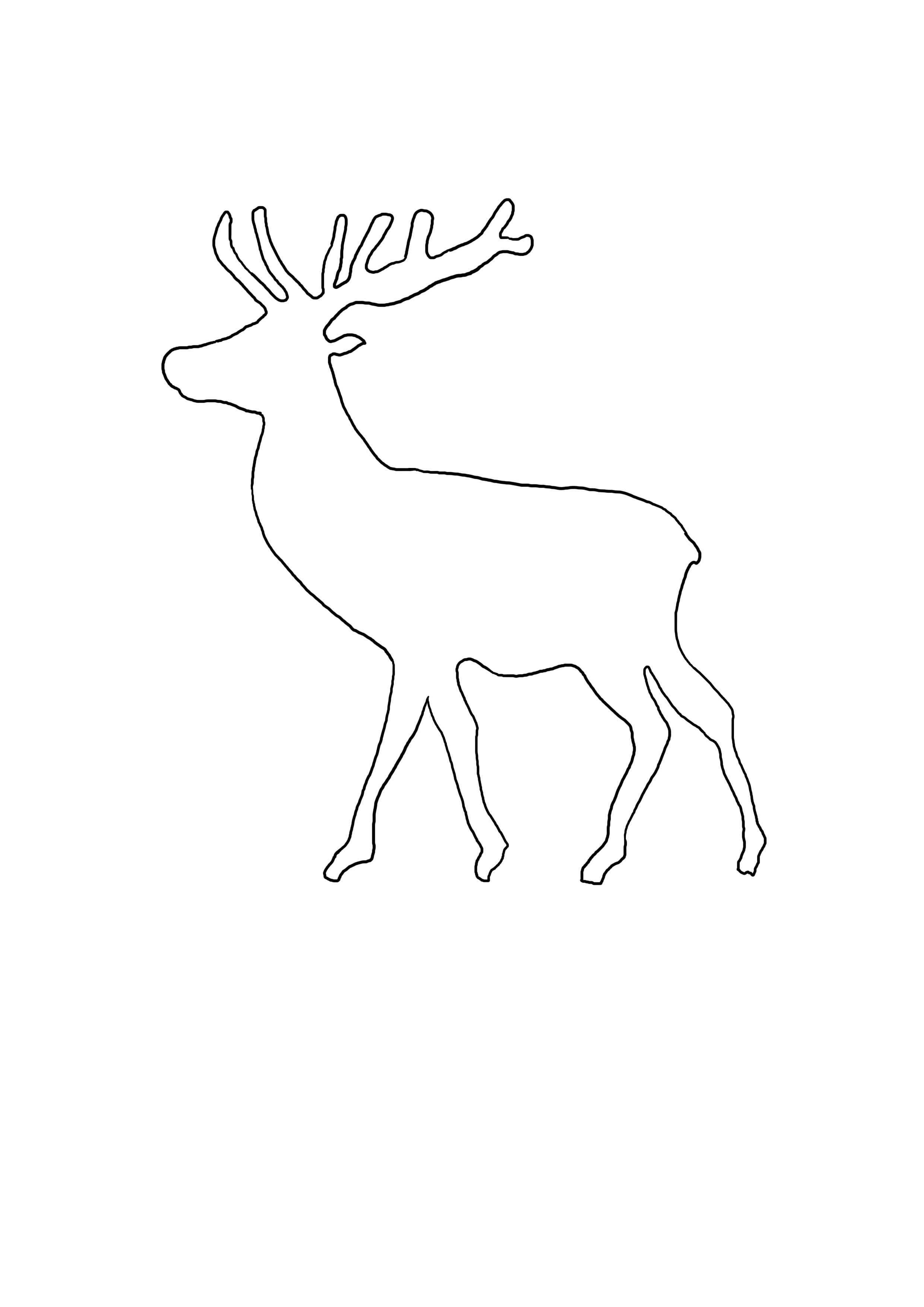 Vorlage Elch 1 Jpg 2 480 3 508 Pixel Laubsage Vorlagen Weihnachten Weihnachten Basteln Vorlagen Malvorlagen