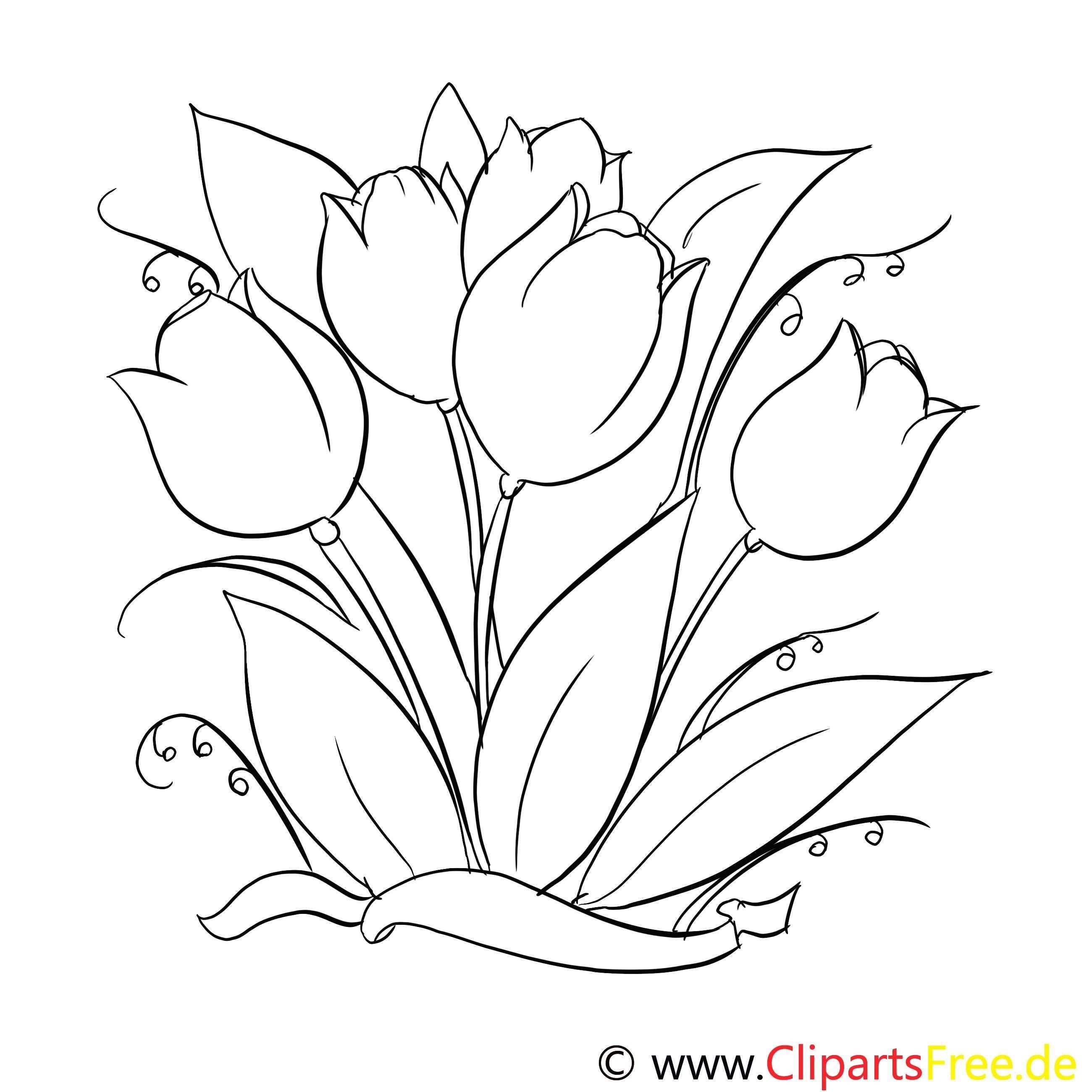 Neu Elfe Vorlage Malvorlagen Malvorlagenfurkinder Malvorlagenfurerwachsene In 2020 Flower Coloring Sheets Coloring Pages Flower Coloring Pages