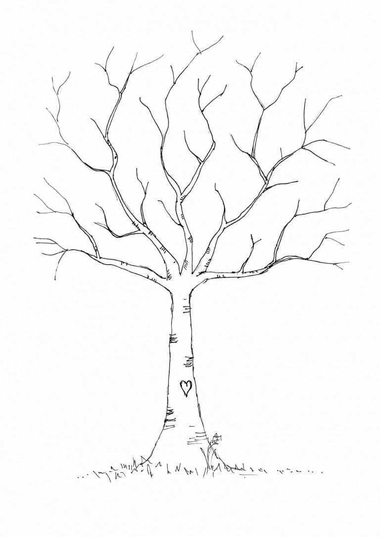 Bastelvorlagen Fur Herbst Kostenlos Ausdrucken Ideen Zur Verwendung In 2020 Stammbaum Kunst Baum Vorlage Herbstmotive