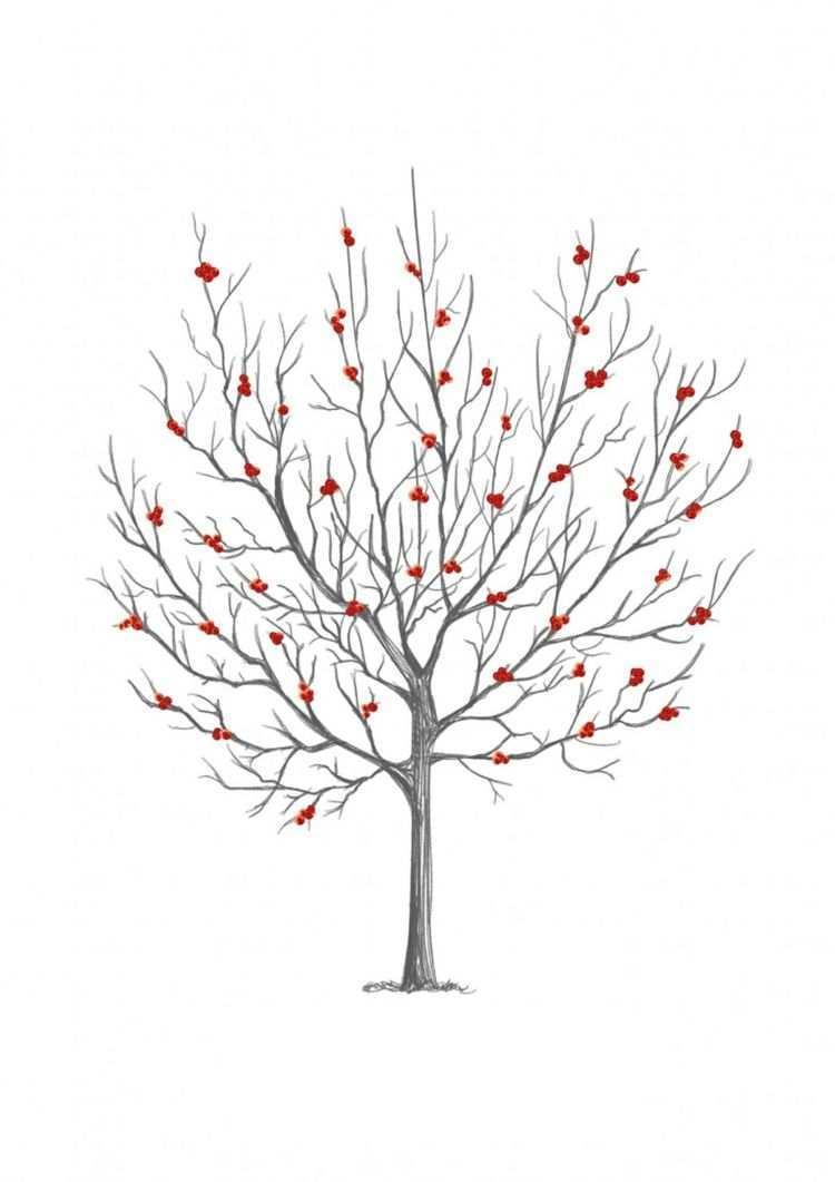 Fingerabdruck Baum Vorlage Beeren Rot Herbst Ausdrucken Kostenlos Baum Vorlage Fingerabdruck Baum Baume Zeichnen