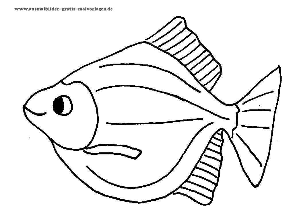 Fische Zeichnen Vorlagen