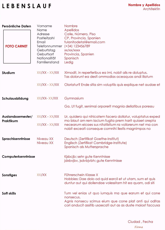Loveable Fuhrerschein Vorlage Word Lebenslauf Vorlagen Word Lebenslauf Muster