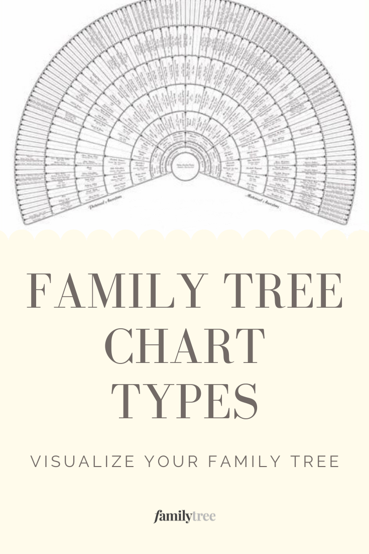 Family Tree Chart Types And Examples Family Tree Chart Family Tree Genealogy Family Tree Project