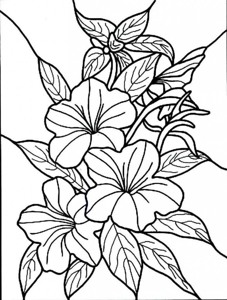Kostenlose Druckbare Hibiskus Malvorlagen Fur Kinder Flower Coloring Pages Coloring Druckbar Malvorlagen Blumen Kostenlose Ausmalbilder Blumenzeichnung