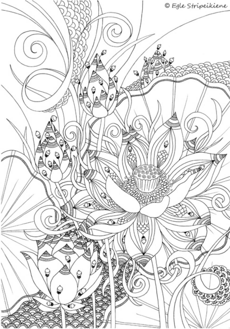 Pin By Cami On Coloring Pages Coloring Pages Coloring Books Colorful Drawings