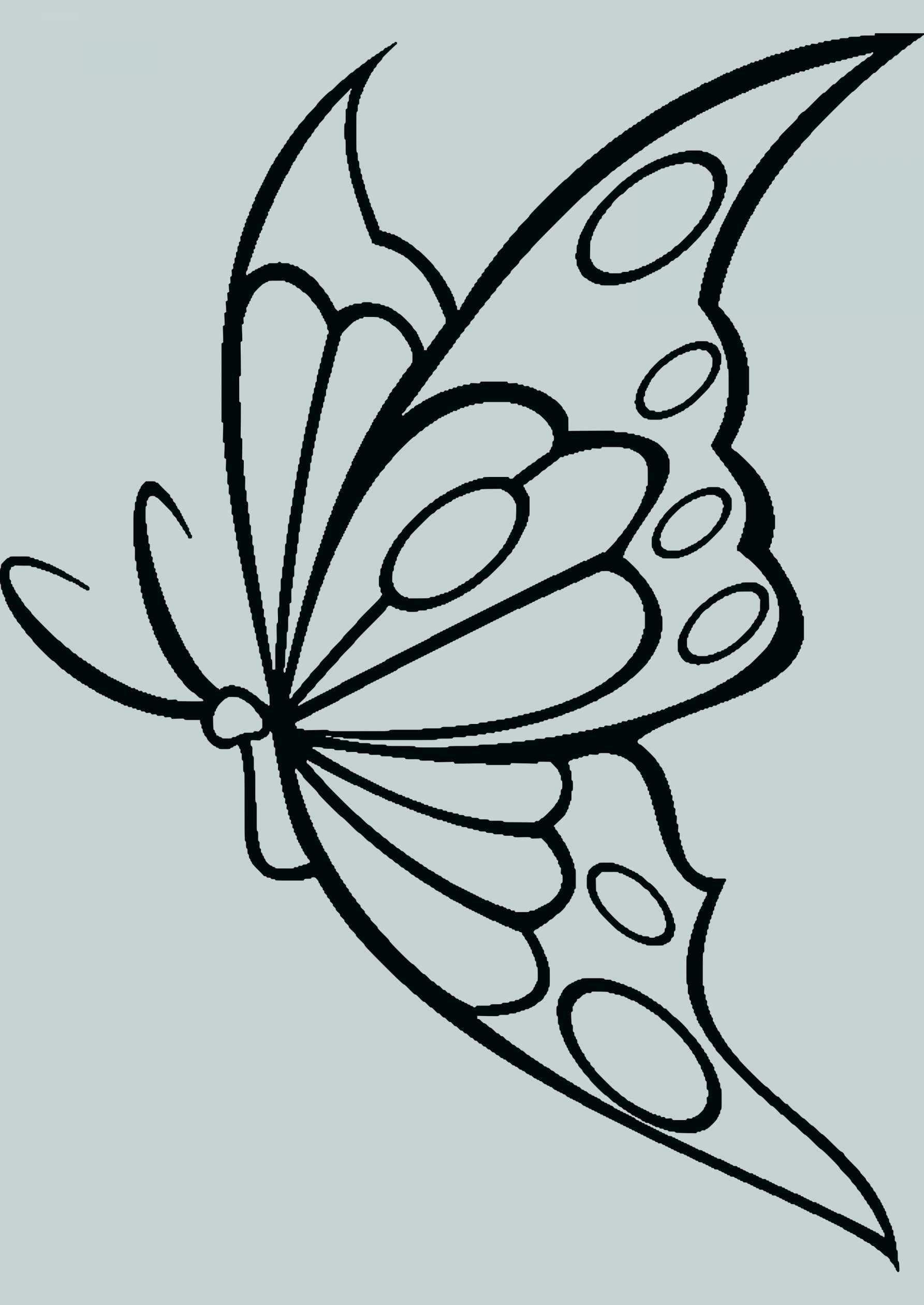 Neu Schmetterling Vorlagen Malvorlagen Malvorlagenfurkinder Malvorlagenfurerwachsene Schmetterling Vorlage Schmetterling Bilder Bilder Zum Ausmalen