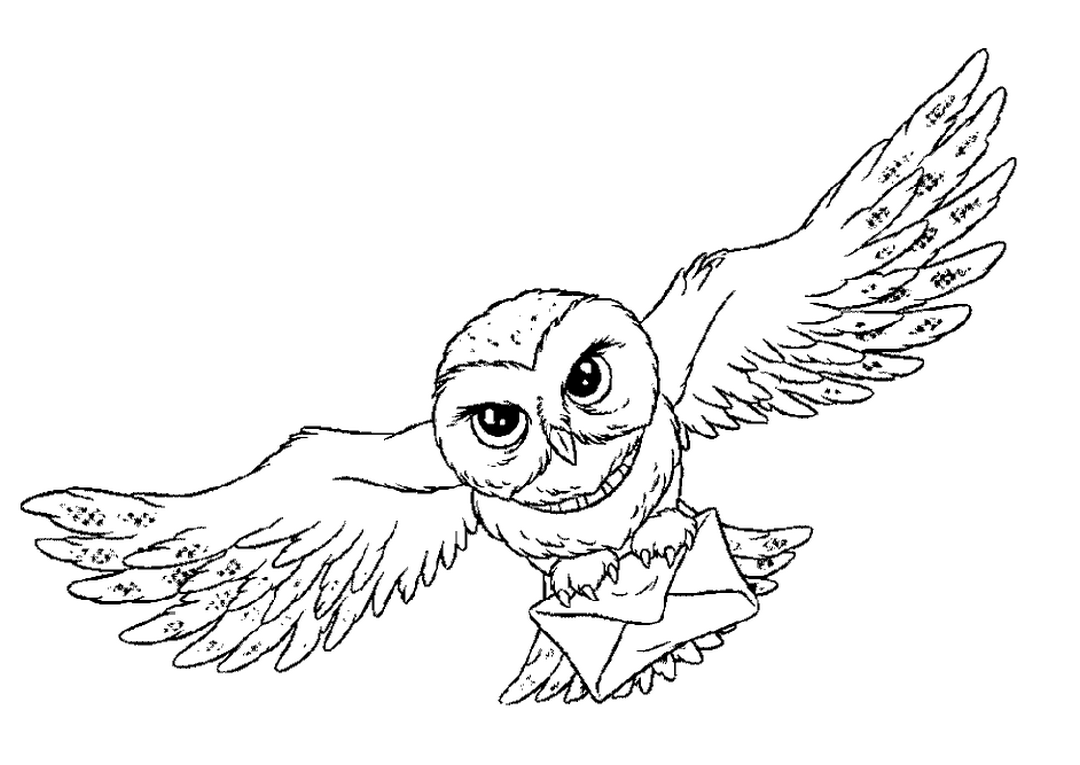 Owl Animal Coloring Pages Bird That Flies Open Wings Easy Coloring Pages For All Disegni Di Harry Potter Edvige Harry Potter