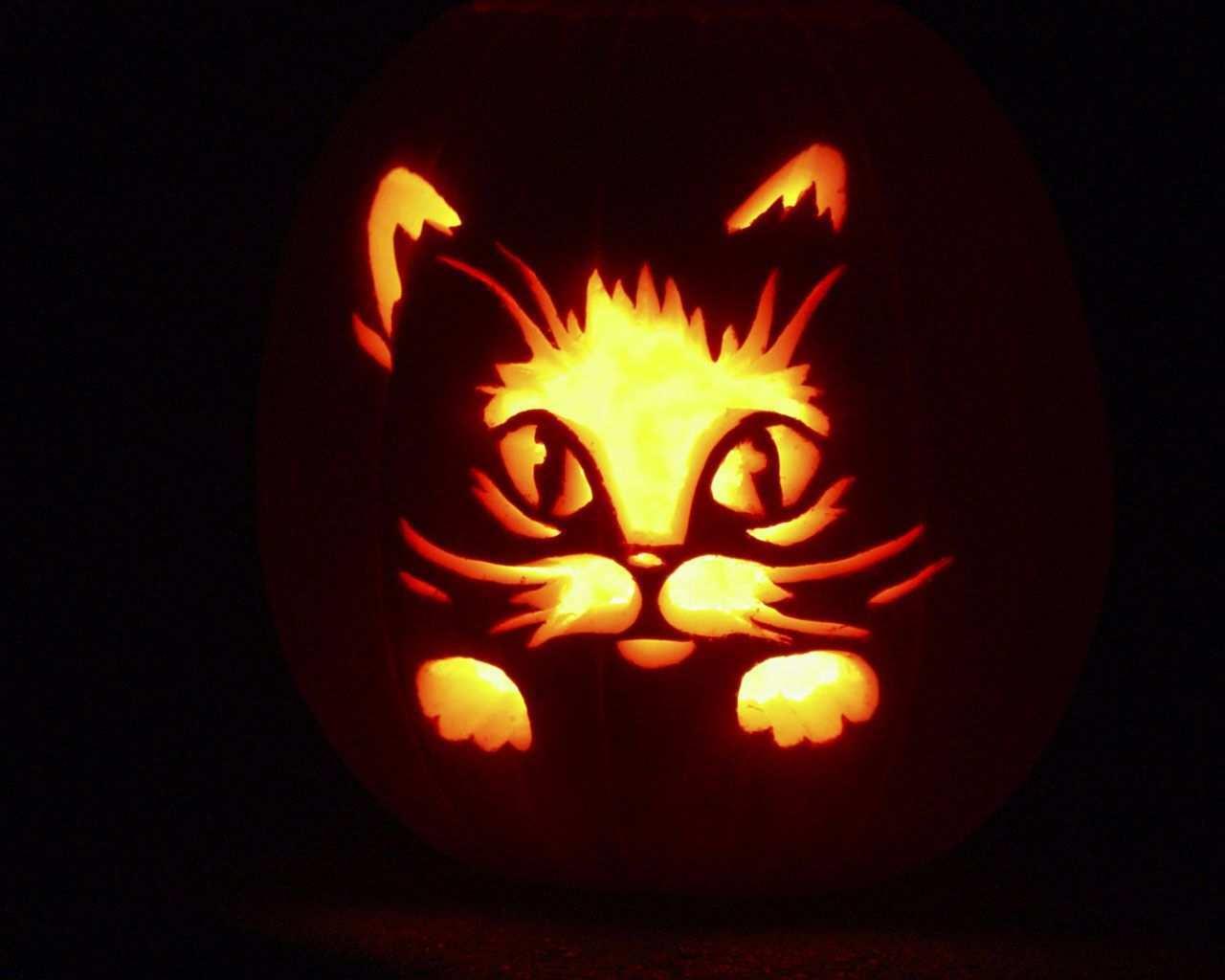Image From Https Animalnecklaces Files Wordpress Com 2011 10 Halloween Backgrou Kurbis Schnitzen Vorlage Katze Halloween Kurbis Schnitzen Kurbisschnitzereien