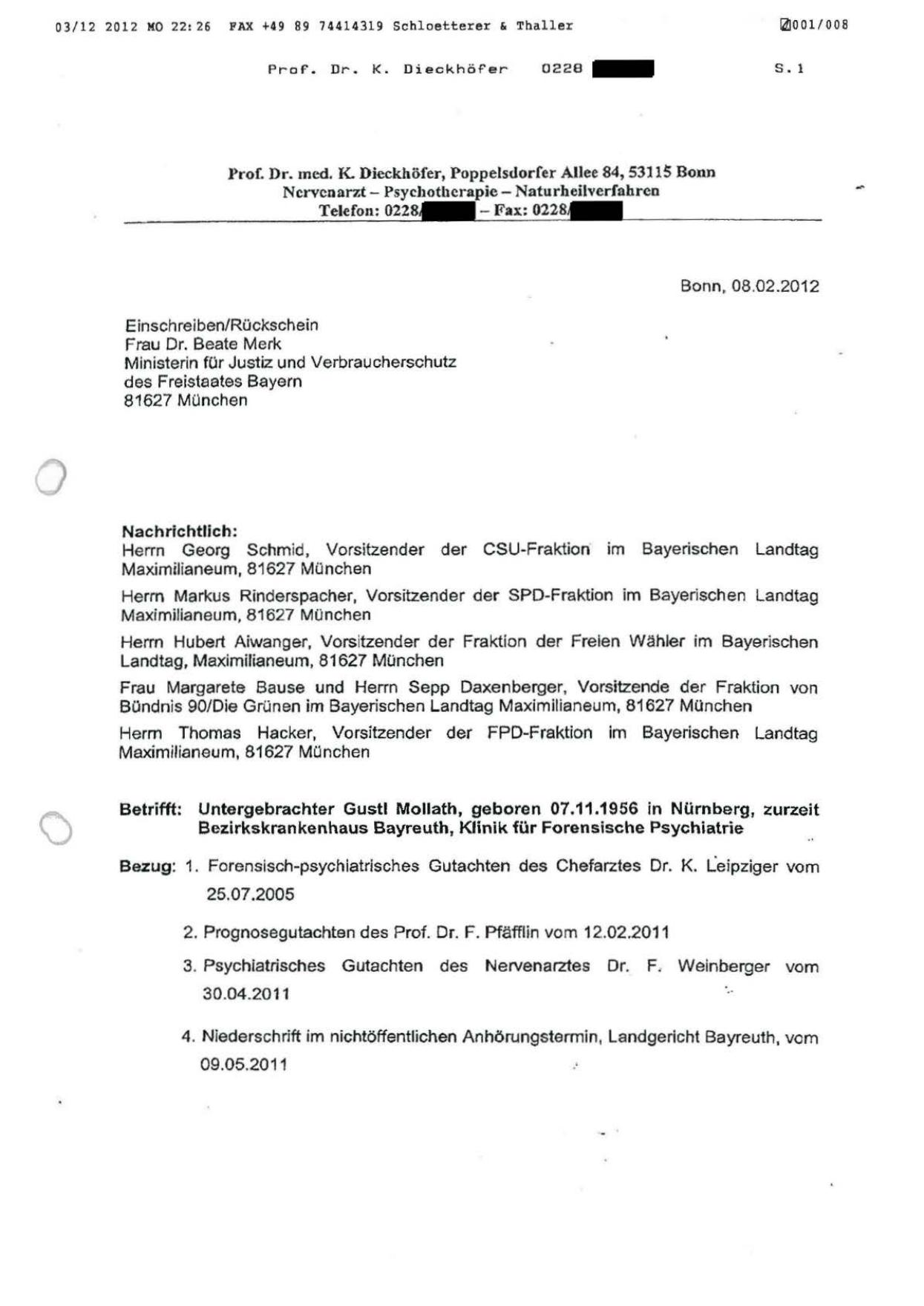 Gutachterliche Stellungnahme Des Prof Dr Klemens Dieckhofer