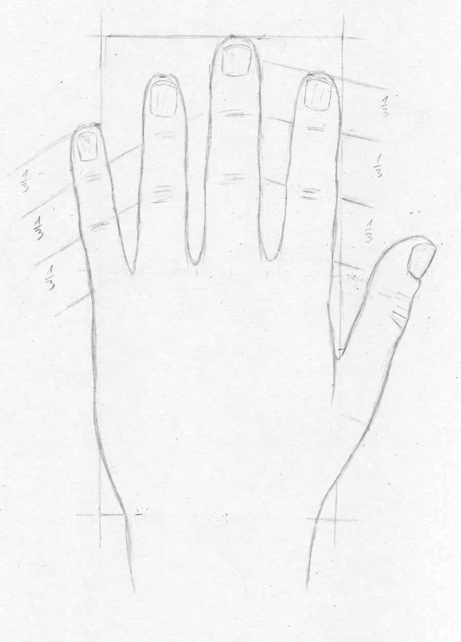 Hand Hande Und Finger Zeichnen Lernen Zeichenkurs Tutorial Zeichnen Lernen Hande Zeichnen Zeichnen