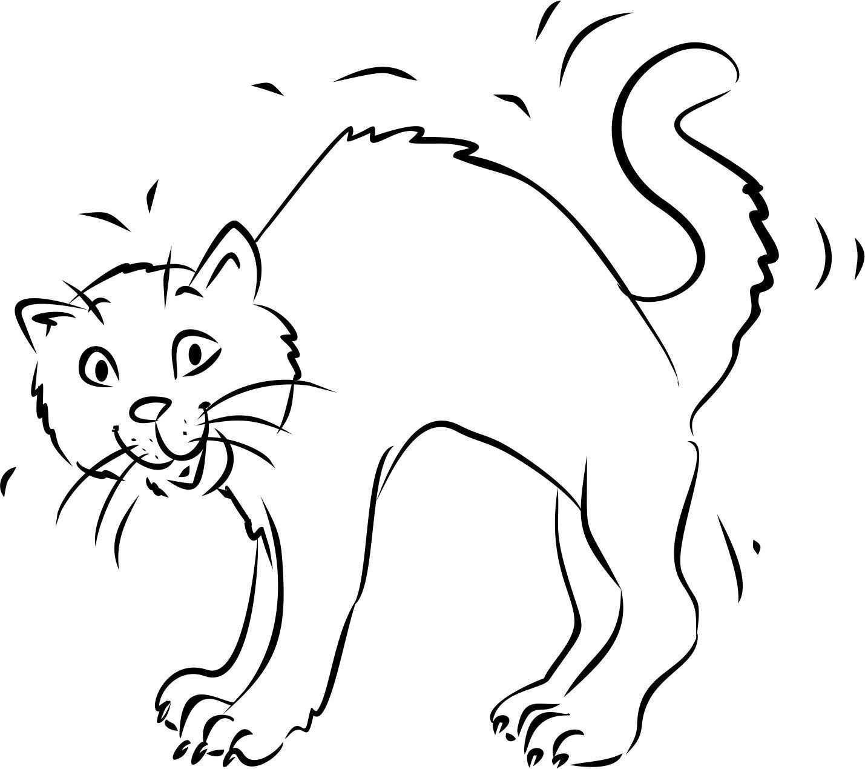 Katze Mit Buckel Malvorlage Katze Tiere Zeichnen Zeichenvorlagen