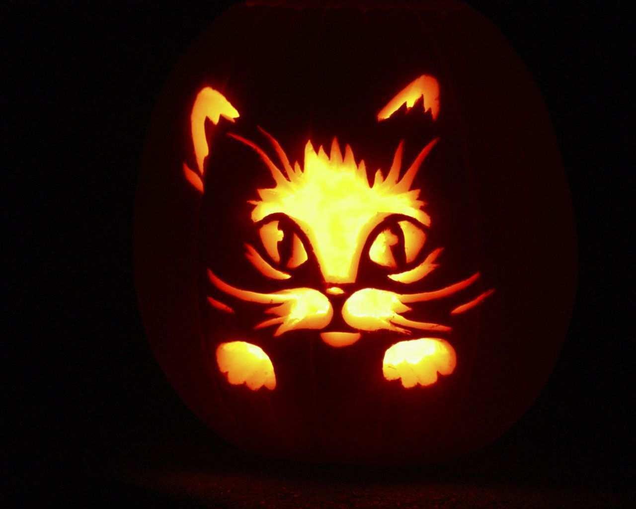 Have A Happy Haunted Halloween Halloweenbackgroundswallpapers Funny Hallowe Kurbis Schnitzen Vorlage Katze Katze Kurbis Schnitzen Halloween Kurbis Schnitzen