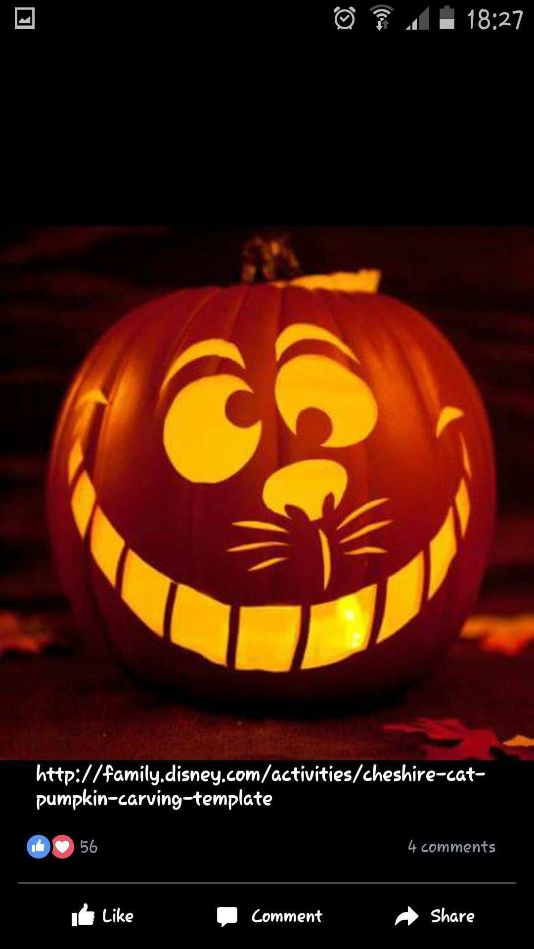 Cheshire Cat Pumpkin Kurbis Schnitzen Lustig Halloween Kurbis Schnitzen Kurbisse Schnitzen