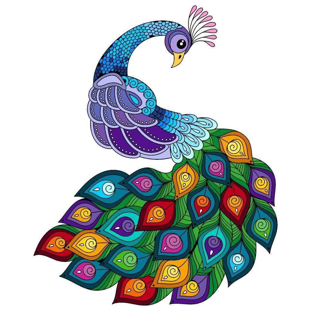Pin By Koulibaly Aissatou On Happy Color Peacock Wall Art Mandala Design Art Peacock Painting