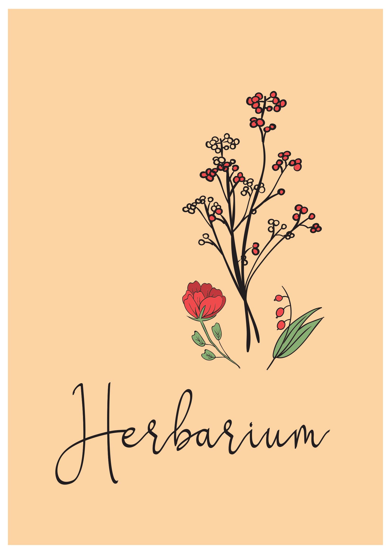 Deckblatt Herbarium 1 Deckblatt Deckblatt Schule Herbarium Vorlage