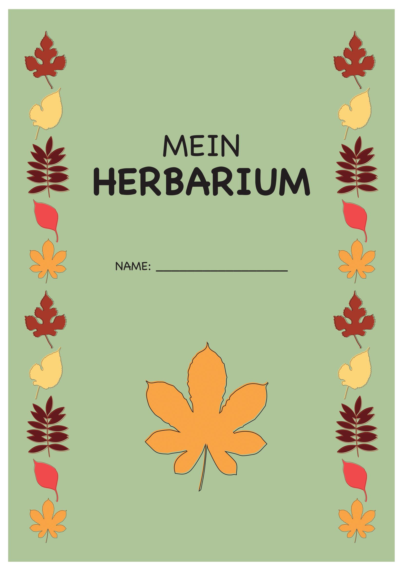 Deckblatt Herbarium 3 Deckblatt Vorlage Deckblatt Schule Deckblatt