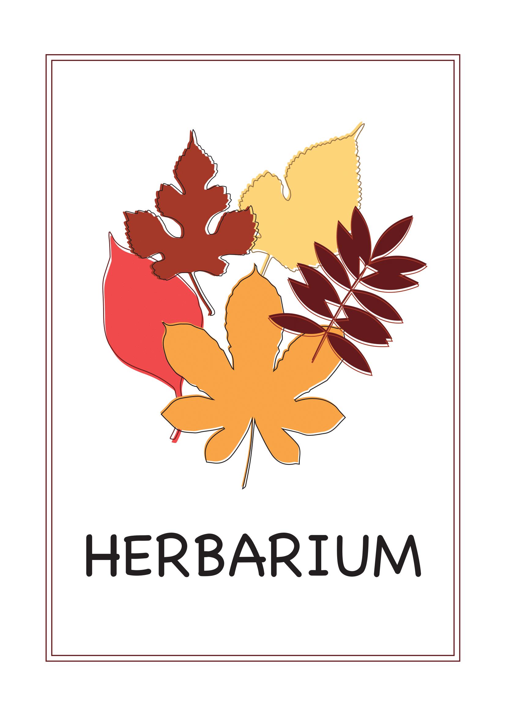 Deckblatt Herbarium 4 Deckblatt Herbarium Vorlage Deckblatt Schule