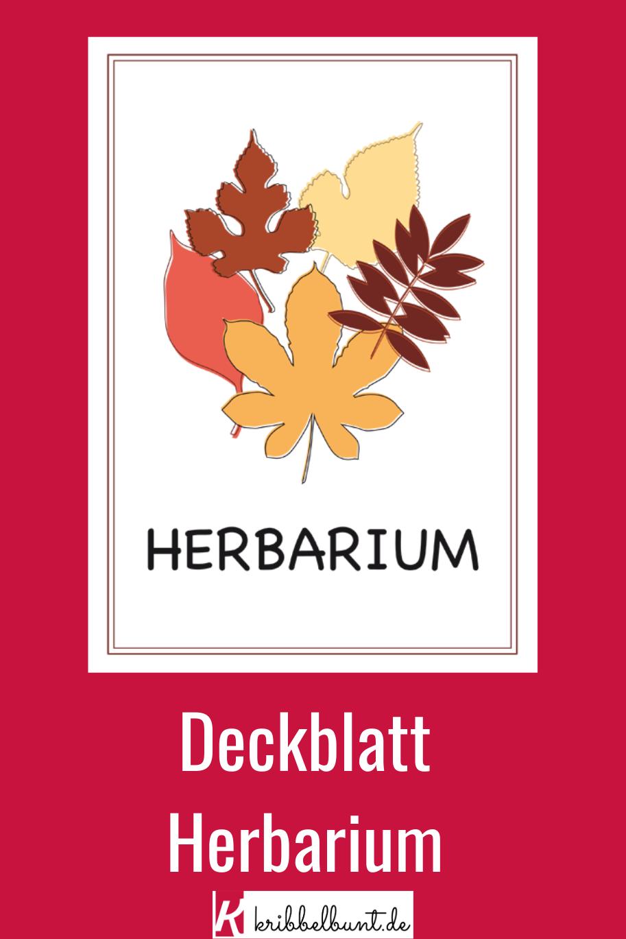 Herbarium Deckblatt Fur Die Schule Zum Ausdrucken Deckblatt Herbarium Vorlage Decken
