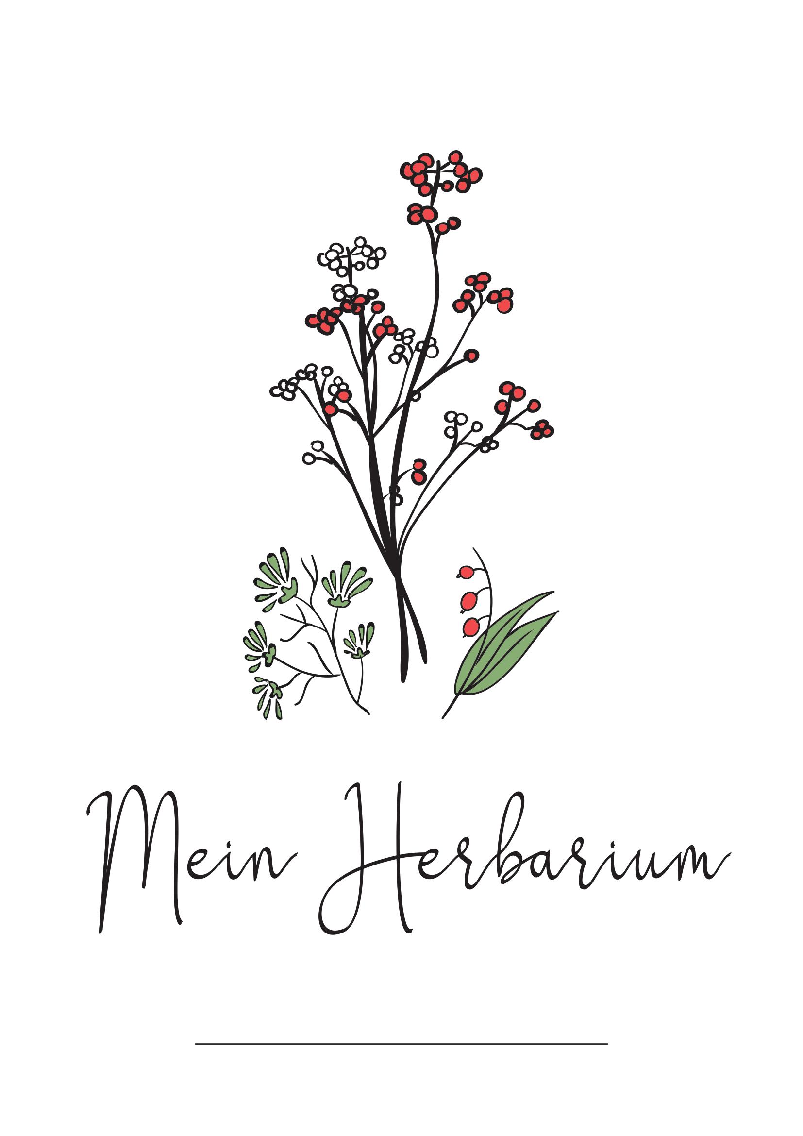 Deckblatt Herbarium 2 Deckblatt Gestalten Herbarium Vorlage Deckblatt